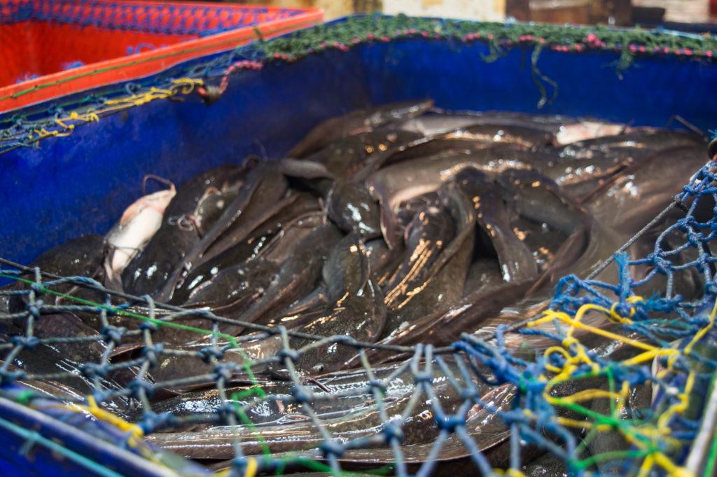 Markets in Phuket | www.andthentherewasfood.co.za