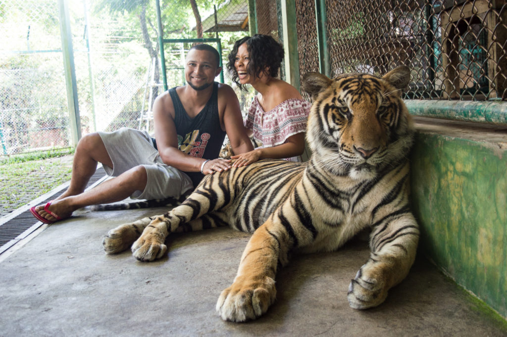 Phuket Tiger Kingdom | www.andthentherewasfood.co.za