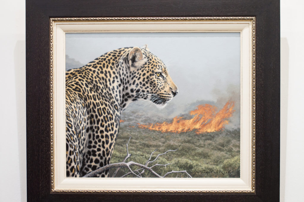 The Cape leopard | www.andthentherewasfood.co.za